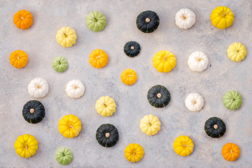 Beautiful top view of several colorful pumpkins on the grey .concrete background with copy space.