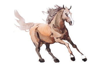 watercolor painting of galloping horse, free running mustang aquarelle