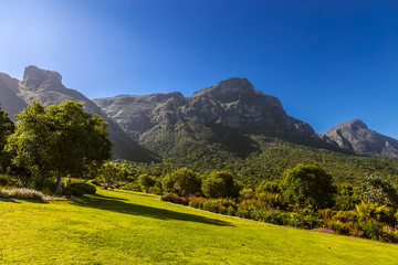 South Africa. Cape Town. Kirstenbosch National Botanical Garden. Panoramic view Table Mountain slopes from Castle Rock (peak in the left) to Devil's Peak