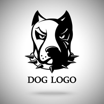 Vector dark dog head in spiked collar, template for logo, badge, label etc.