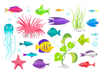 Cartoon fish collection set
