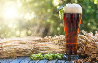 Beer, kvass malt hops