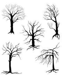 collection of silhouettes of trees, isolated on white background