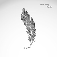 Vector freehand drawing of dark bird feather isolated on gray background