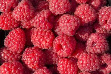 closeup of raspberries in Norway
