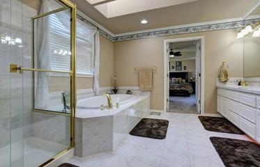 Beautiful luxury bathroom interior
