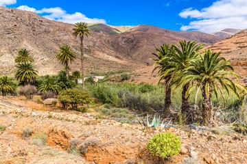 Barranco De Las Penitas - Fuerteventura, Spain