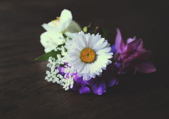 White daisy and aquilegia flowers