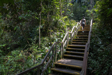 Stair Climbing at Macritchie