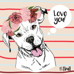 Vector close up portrait of pitbull girl, wearing the flower wreath. Hand drawn domestic pet dog illustration.