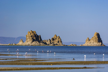 Lake Abbe Landscape with Flamingos and Volcanic rock formations, Djibouti