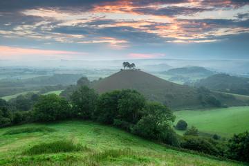 Fototapete - Colmer's Hill in Dorset