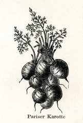 Paris Market Carrots (from Meyers Lexikon, 1895, 7/288/289)