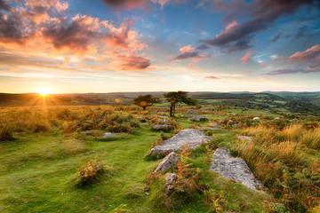 Fototapete - Stunning Moorland Sunset