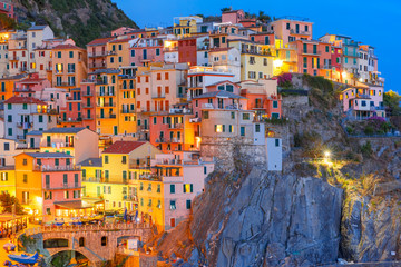 Poster Ligurie Aerial night view of Manarola fishing village, seascape in Five lands, Cinque Terre National Park, Liguria, Italy.