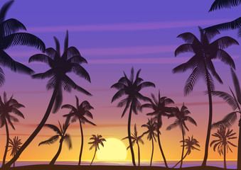 Palm coconut trees Silhouette at sunset or sunrise. Realistic vector illustration. Earth paradise on the beach.