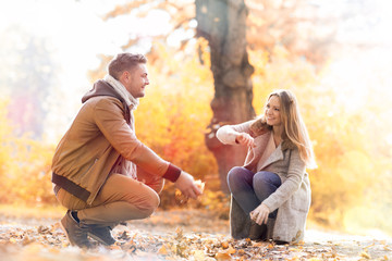 love autumn couple