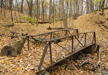 619-69 Bridge to Autumn