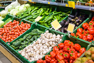Vegetables on the counter in the store - cabbage, cucumbers, tomatoes, garlic, eggplant, pepper