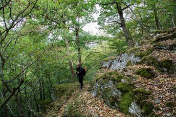 Wanderin, Seniorin entlang an einem Berghang im Wald, Denntal, Eifel