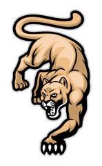 crawling cougar
