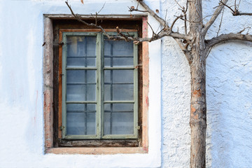 Closed wooden window with autumn tree on white wall