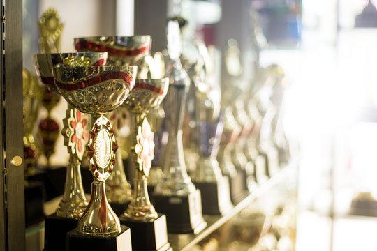 Trophy cup award