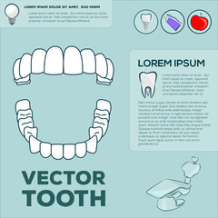 Teeth infographic template.