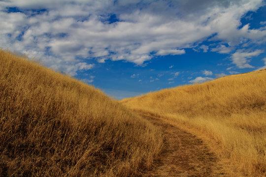An evening mountain hike near Milpitas, California