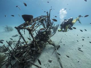 Unterwasser - Riff - Wrack - Flugzeugwrack - Schwamm - Taucher - Tauchen - Curacao - Karibik