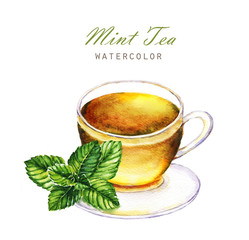 Hand-drawn watercolor illustration of the tea. Cup of the mint tea and mint leaf isolated on the white background.
