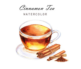 Hand-drawn watercolor illustration of the tea. Cup tea with cinnamon isolated on the white background.