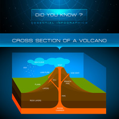 Vector Infographic - Cross Section of Volcano