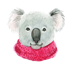 Koala in a pink scarf