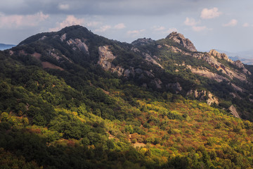 Ficuzza Hills