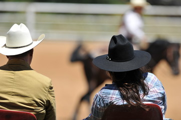 View on the backs of judges with a rider on a background