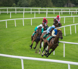 Jockeys and race horses galloping around the bend of the race track