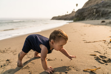 10 month old baby boy crawls  at the beach