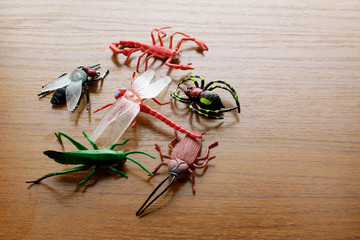 Toy Insects