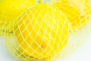 Fototapete - Zitronen im Netz 3 - 21.9.2016