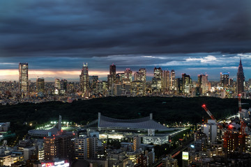 Cloudy Tokyo Skyline in the Evening