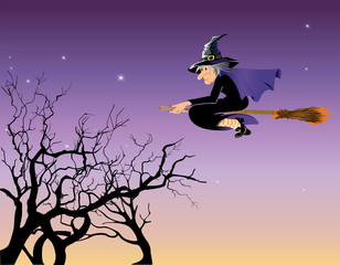 Halloween witch flying in a night sky