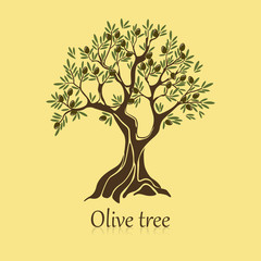 Natural olive tree with branches for sticker