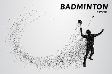 Badminton consists of particles