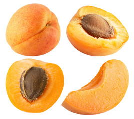collection of apricots isolated on the white background