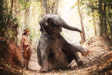 Relationship a man, mahout  Of elephant. Parenting with Love