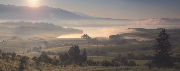 Misty morning landscape