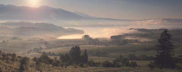 Tuinposter Grijs Misty morning landscape