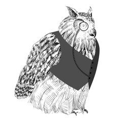 Vector sketch of owl in a vest. Hand drawn illustration