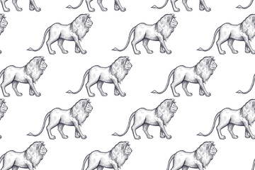 Seamless pattern with African lions.